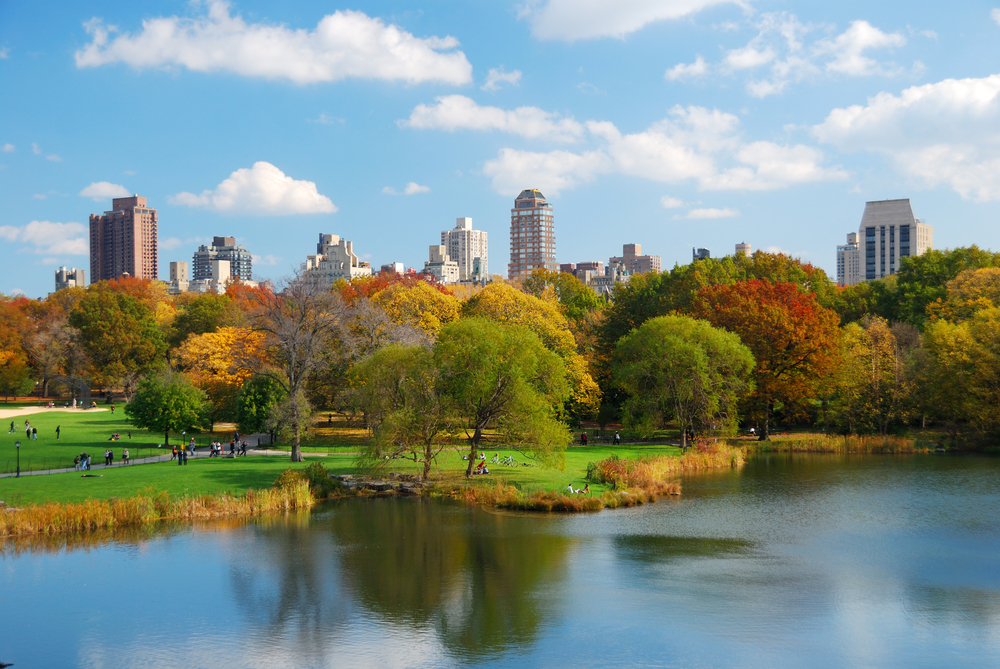 new-york-shutterstock_65988460